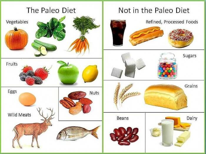The Paleo Diet VS No in the Paleo Diet - Healthy Eating Fitness