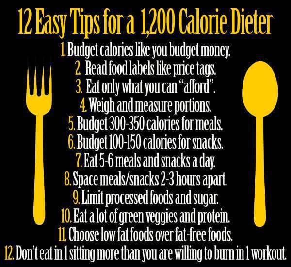 12 Easy Tips for a 1,200 Calorie Dieter - Healthy Eating Fitness