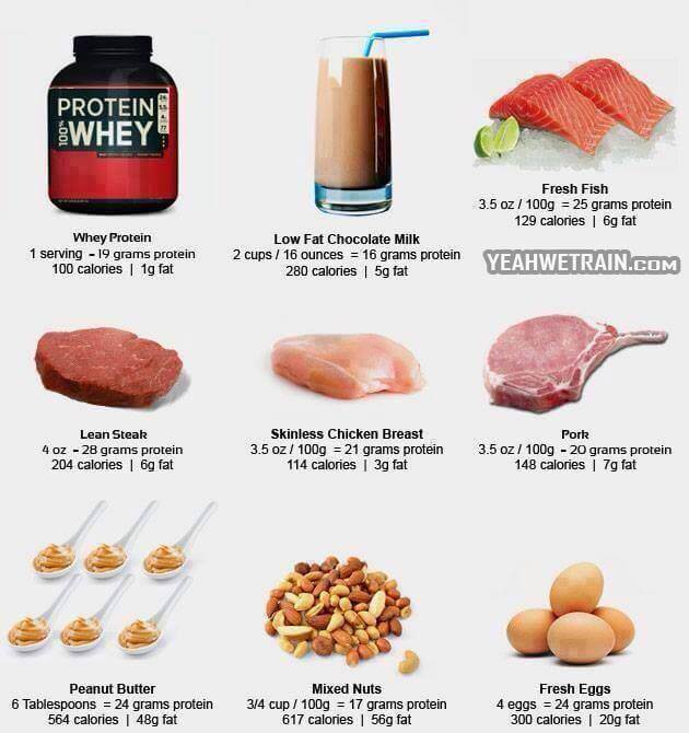 Great High Protein Source - Whey Protein Milk Fish Chicken Steak