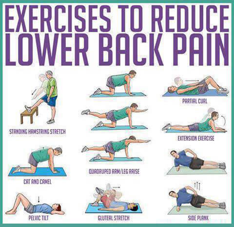 Exercises to reduce Lower Back Pain - Healthy Fitness Plank Abs