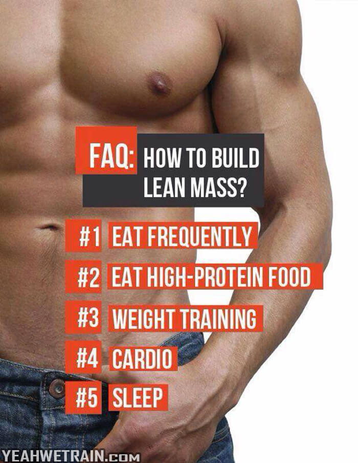 How To Build Lean Mass - Healthy Workout Tips Sixpack Training