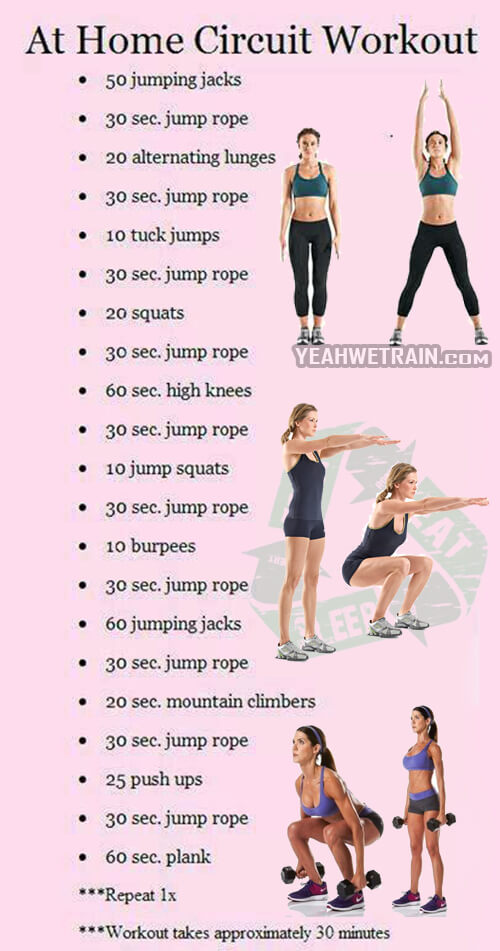 At Home Circuit Workout - Fitness Training Sixpack Core Abs Legs