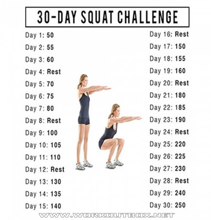 30 Day Squat Challenge - Healthy Fitness Training Butt Legs Core