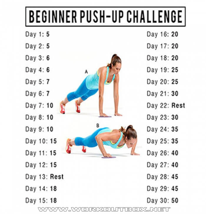 30 Day PushUp Challenge - Healthy Fitness Training Chest Arms Ab
