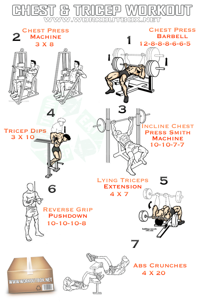 Chest & Tricep Workout - Healthy Fitness Recipes Sixpack Arms Ab
