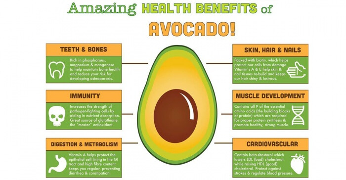 Amazing Healthy Benefits of Avocado - Diet Immunity Skin Hair Ab