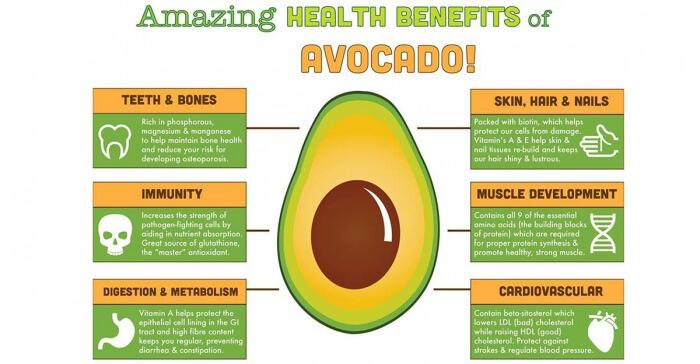 Amazing Healthy Benefits of Avocado - Diet Immunity Skin Hair Ab