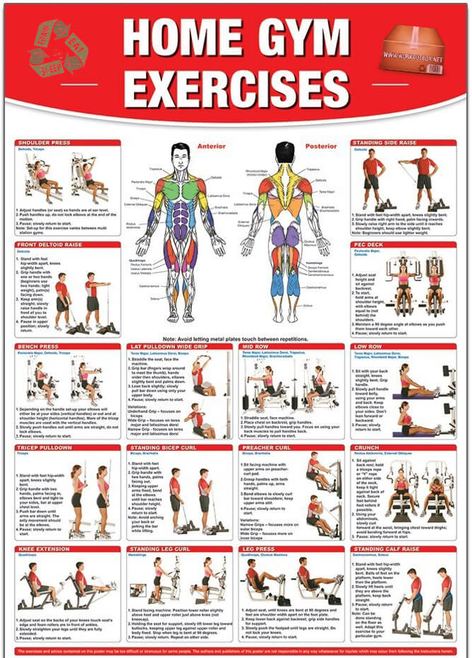 Home Gym Exercises - Healthy Workout Shoulder Chest Arms Sixpack