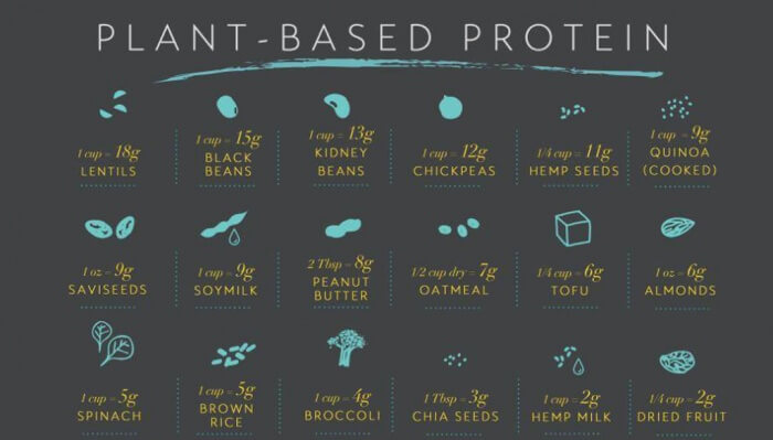 Great Plant-Based Protein Chart - Healthy Fitness Food Eating Ab