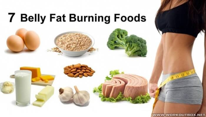 7 Belly Fat Burning Foods - Healthy Eating Food Egg Tuna Chicken