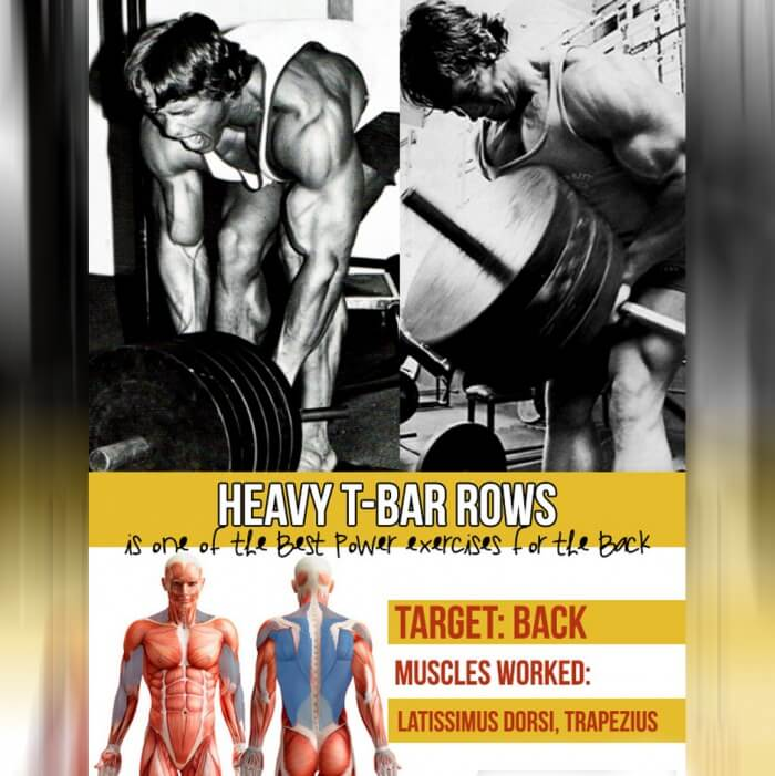 Heavy T-Bar Rows - Is One Of The Best Power Exercises For Back !