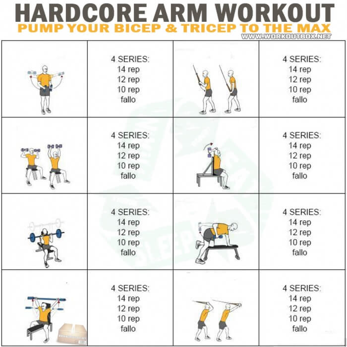 Hardcore Arm Workout - Pump Your Bicep & Tricep The Max Forarms