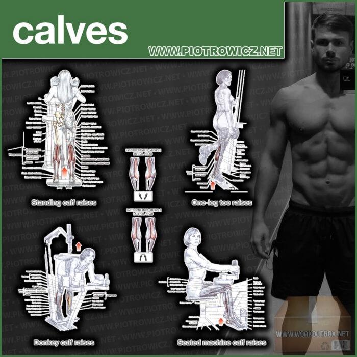 Calves Workout Exercises - Best Training Piotrowicz
