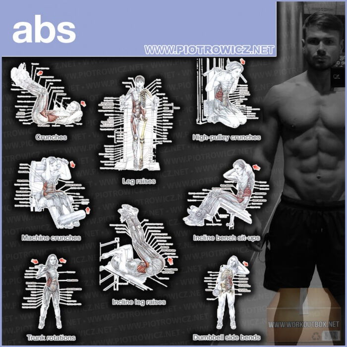 Abs Workout Exercises - Best Training Piotrowicz Fitness Sixpack