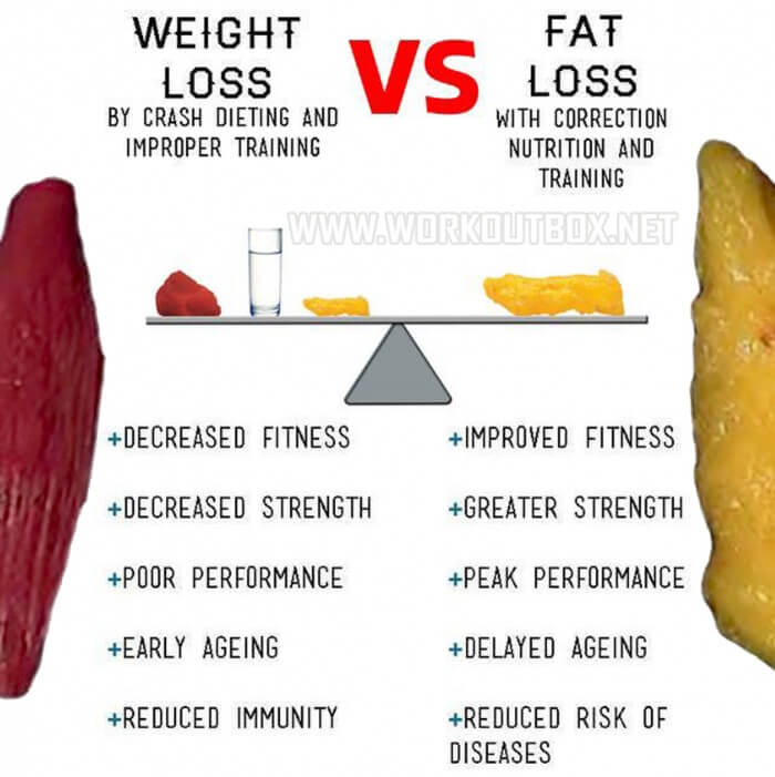 Weight Loss Vs. Fat Loss - Crash Dieting Improper Correction Nut