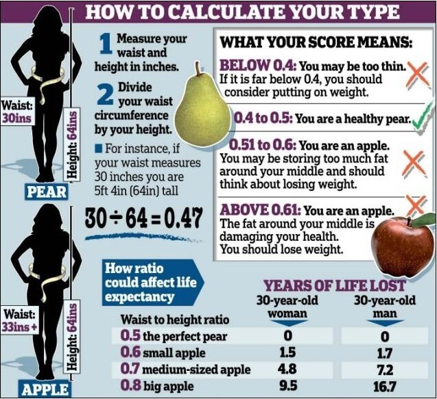 How To Calculate Your Body ! Fat Percentage Chart Loss Weight Ab