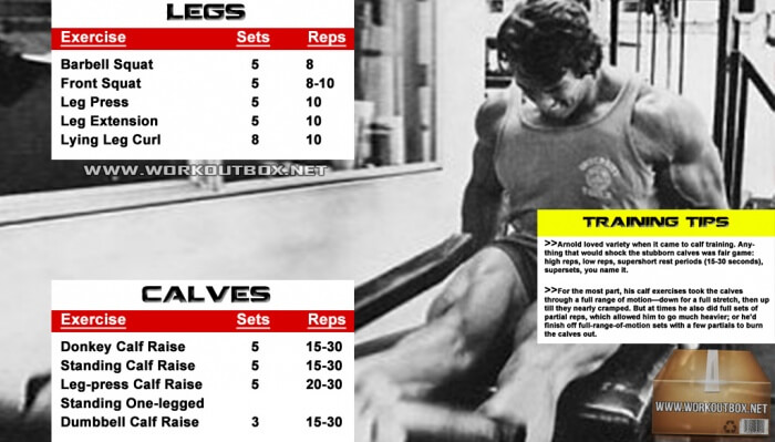 Arnold Legs And Calves Workout Routine Schwarzenegger Training