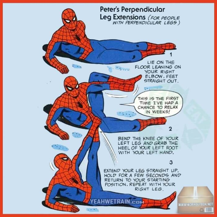 Peters Perpendicular Leg Extensions For People With Perpen. Legs