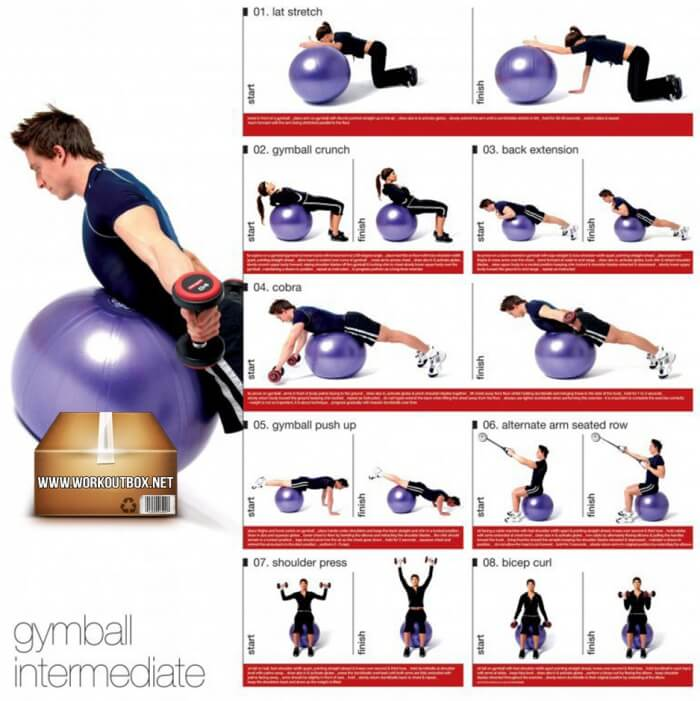 Gymball Intermediate Workout For Women And Men - Healthy Fitness
