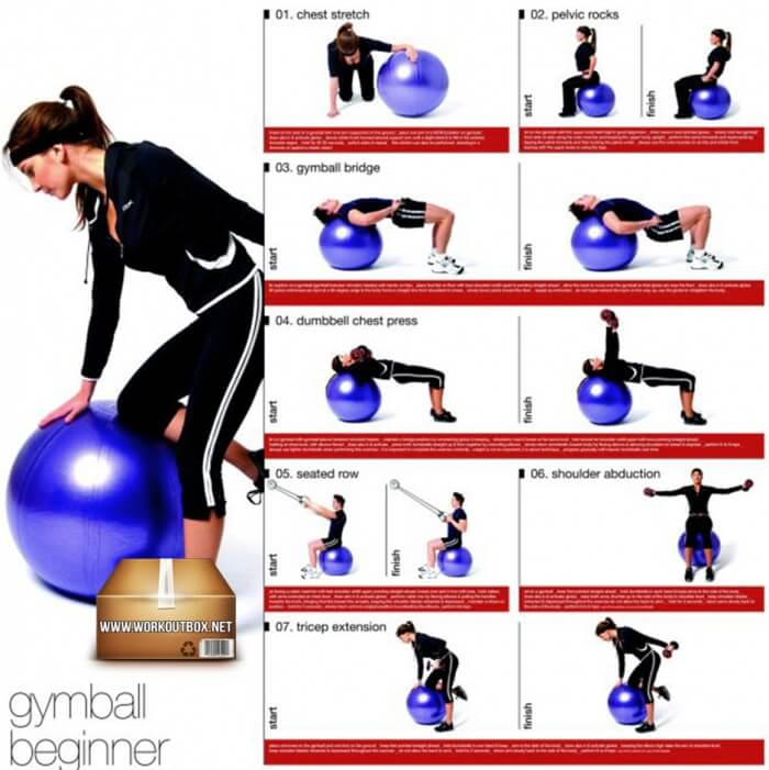Gymball Beginner Workout For Women And Men