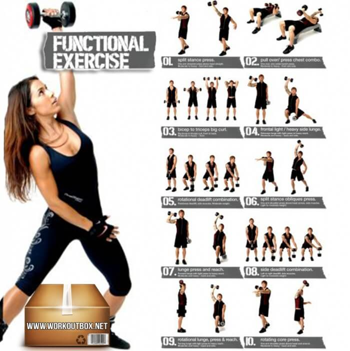 Dumbbell Exercises For Women And Men - Functional Healthy Ab Leg