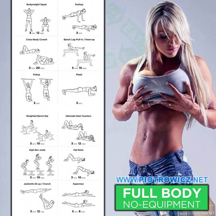 Full Body Workout No Equipment Y Female Fitness Training Ab