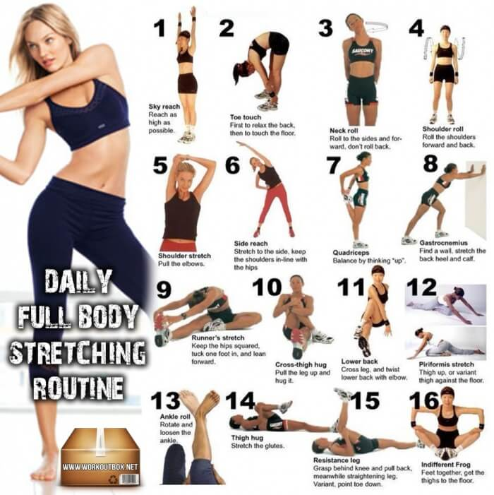Daily Full Body Stretching Routine ! Healthy Fitness Stretch Abs