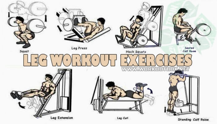 Leg Workout Exercises ! Healthy Fitness Training Routines Tips