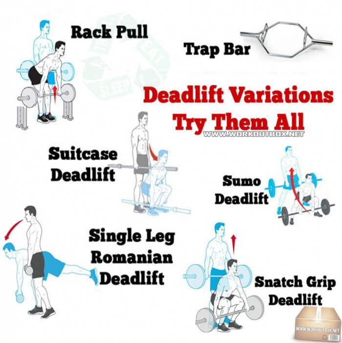 Deadlift Variations Try Them All - Healthy Fitness Workout Plan