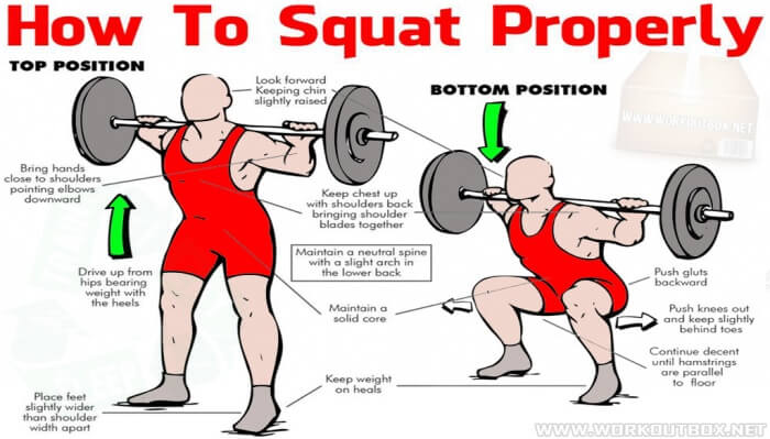 How To Squat Properly - Healthy Fitness Workout Plans Legs Butt