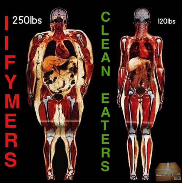 Unhealthy vs Clean Eaters - See The Different IIFYMERS Healthy