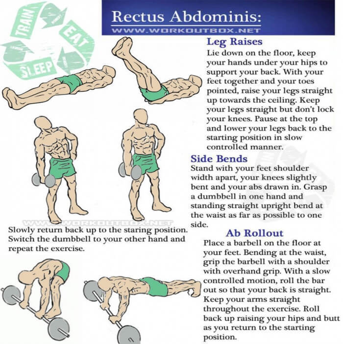 Rectus Abdominis Workout - Sixpack Training Healthy Hardcore Abs