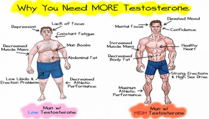 Why You Need More Testosterone - Healthy Fitness Tips Workout Ab