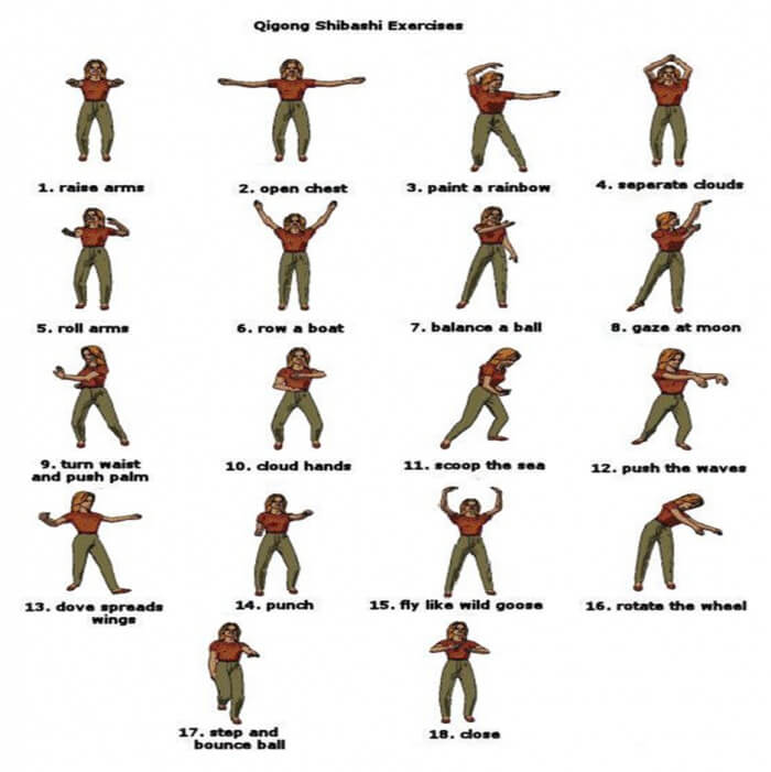 Qigong Shibashi Exercises - Healthy Fitness Training ...