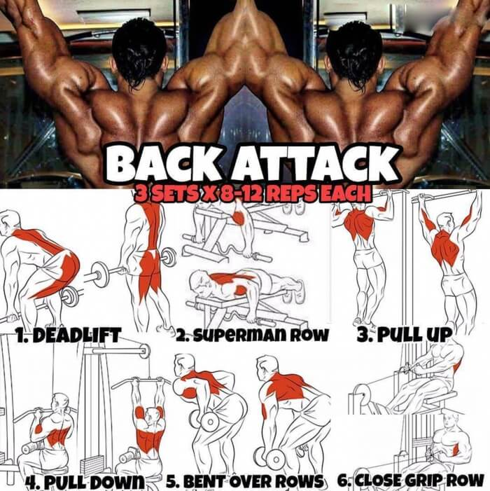 Back Attack Workout - Wide Strong Training